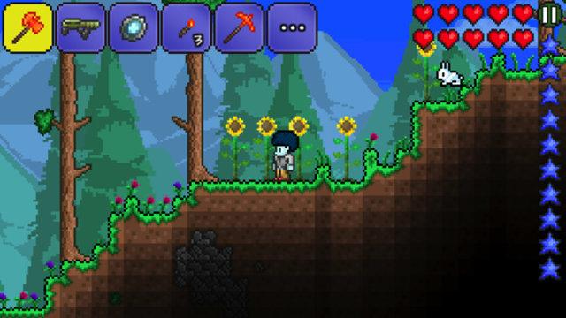 森林 .jpg