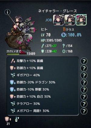 防御力+20%