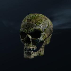 アーティファクト_不機嫌な頭蓋骨.png