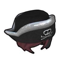 伝説の女海賊の帽子