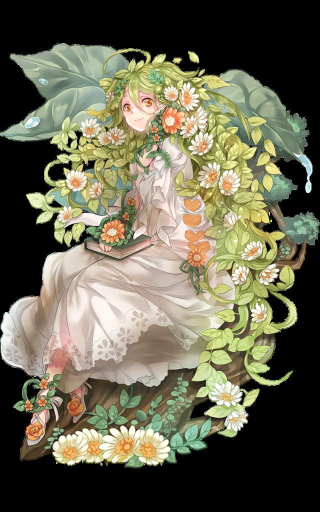 fiora_2D