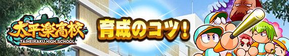 太平楽高校育成のコツ.jpg