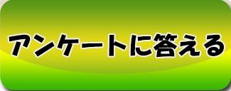 /theme/famitsu/kairi/Other/アンケート