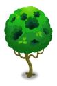 不思議な穴の木