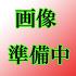 /theme/famitsu/mhexplore/images/weapon/画像準備中