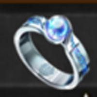 冒険家の指輪